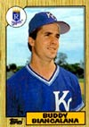 Buddy Biancalana's luck in the 1985 World Seriesmade the difference between collectible and debatable.