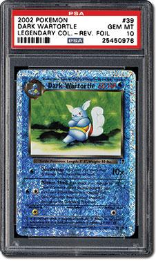 Dark Wartortle