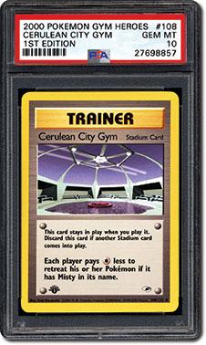 Cerulean City Gym